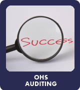OHS Auditing