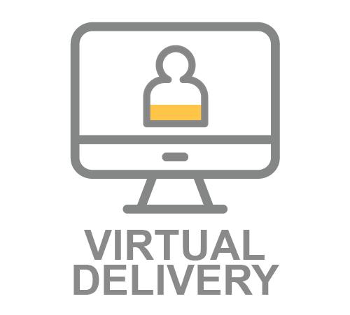 virtual3